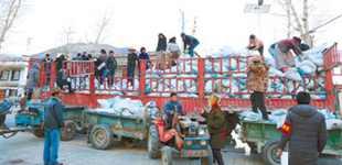 拉萨:春耕备耕 有序开展       近日,满载有机肥的货车开进了甲玛乡龙达村,各小组村民开着拖拉机排着队登记领取有机肥。
