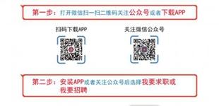 西藏自治区人才广场智慧化招聘系统即将启用